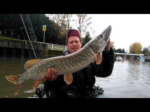 Hampton Court, River Thames, Pike Fishing, 011119