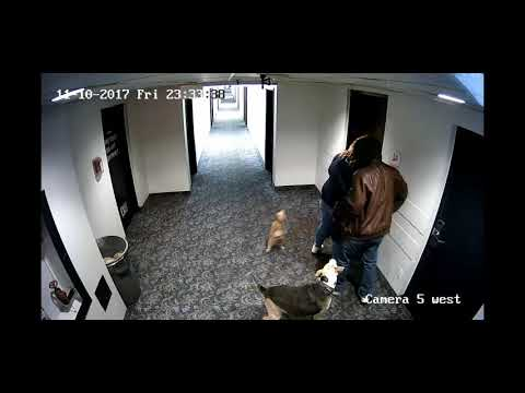 American Hotel Robbery Suspects 11 10 17