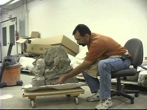 Discover the Alamosaurus
