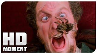 Банки с краской и паук - Один дома (1990) - Момент из фильма