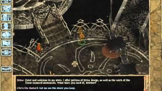 Gambar cover Baldurs Gate 2, part 8 of 18