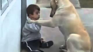 Самое доброе видео  3    http://vk.com/video129873225_170929796
