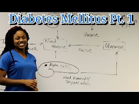 Medical Surgical Endocrine Sytem: Diabetes Mellitus Pt. 1