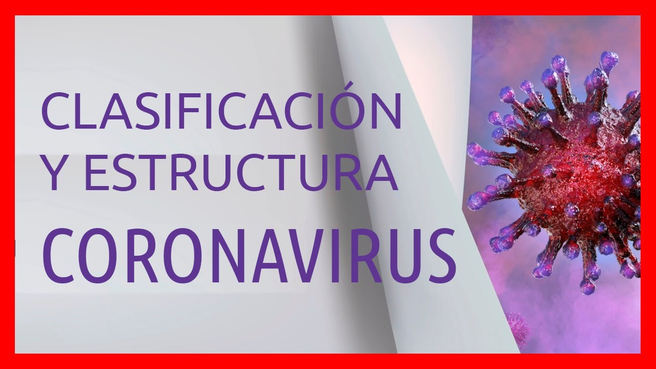 estructura y composicion de los virus pdf