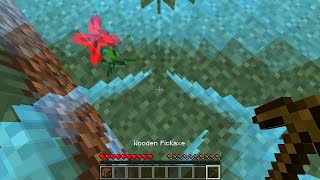 Playing 1 by 1 Minecraft