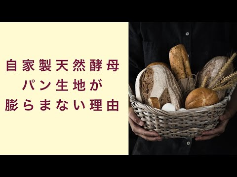 【自家製天然酵母】パン生地がうまく膨らんで来ない理由とは フルーツ酵母 自家製天然酵母 パン教室 教室開業 大阪 奈良 東京 福岡 名古屋