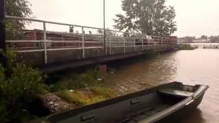 Reka Sava Sremska Mitrovica 2014