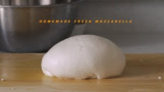 Homemade Fresh Mozzarella | Honeykki 꿀키