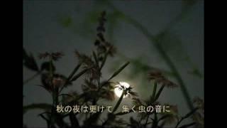 石原裕次郎のハワイアンムード歌謡・・