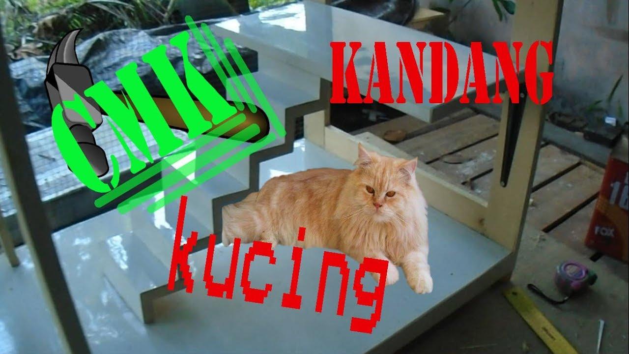 Cara Membuat Kandang Kucing Dari Kayu Minimalis Kucing Persia Youtube