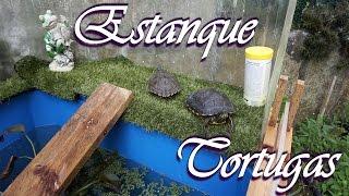 como hacer un estanque alto para tortugas
