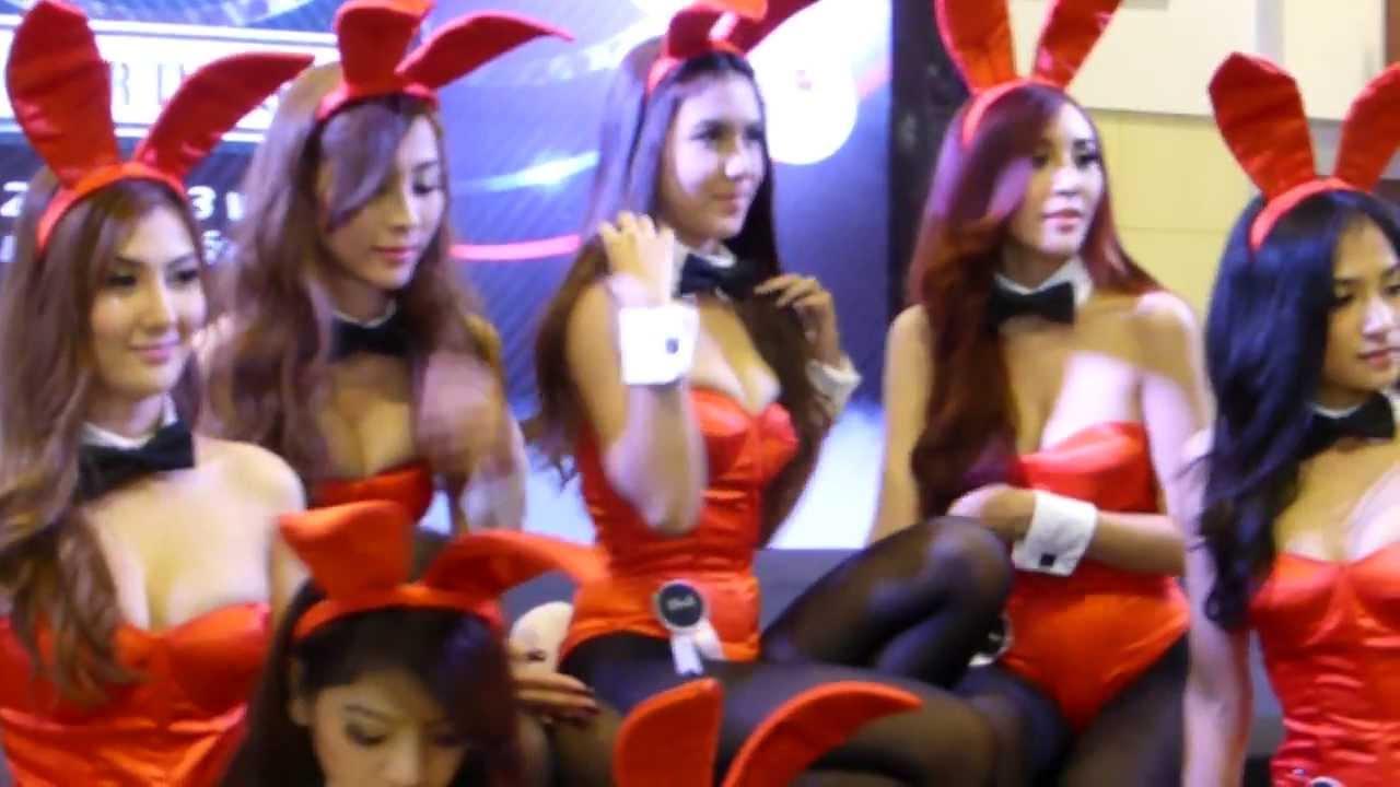Motor bunny videos