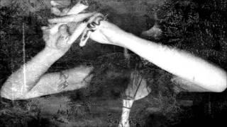 Turdus Merula∼Mandragora Officinarum