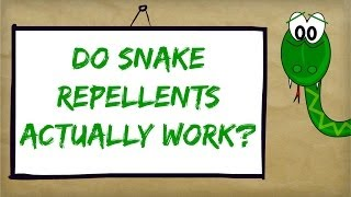 Best Snake Repellent Reviews | Natural Ways to Control and Repel Snakes
