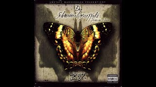 Bass Sultan Hengzt - Der Schmetterlingseffekt (2007) (Komplettes Album)