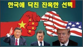미중 무역전쟁, 한국에 닥친 잔혹한 선택