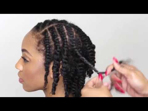 Natural Hair Tutorial How To Do A Two Strand Twist Youtube