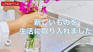 【ライフスタイル動画】新しいものを生活に取り入れました♪〜seriaのヘアアクセ〜フラワーベース〜ランドリーマグちゃん
