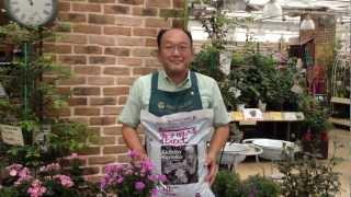 プロトリーフチャンネル プロトリーフ 金子明人監修 花の土の商品紹介で...