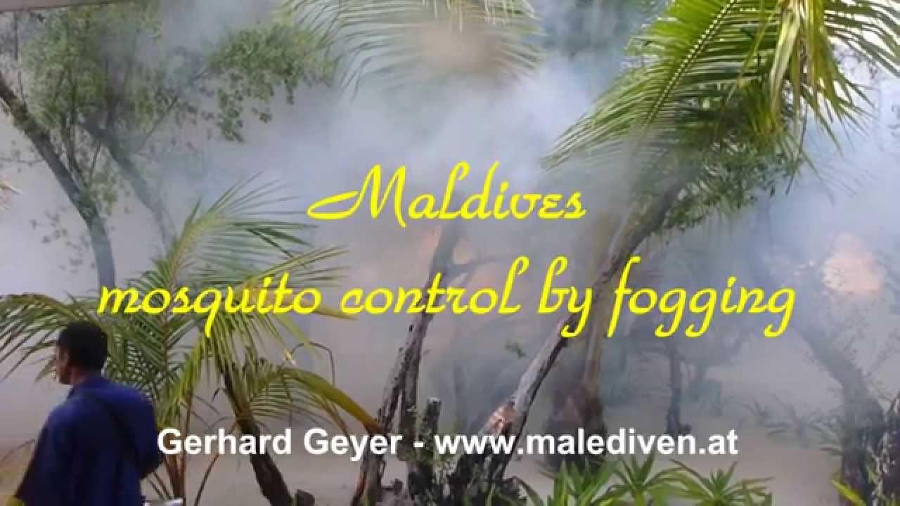 how to make mosquito fogging liquid