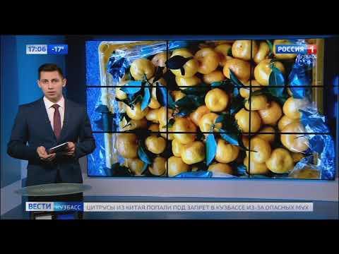 В России ввели санкции на поставку китайских цитрусовых