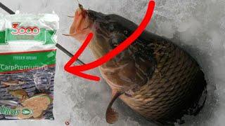 Ловля сазана зимой Зимняя рыбалка на сазана секреты на сазана зимой 2021