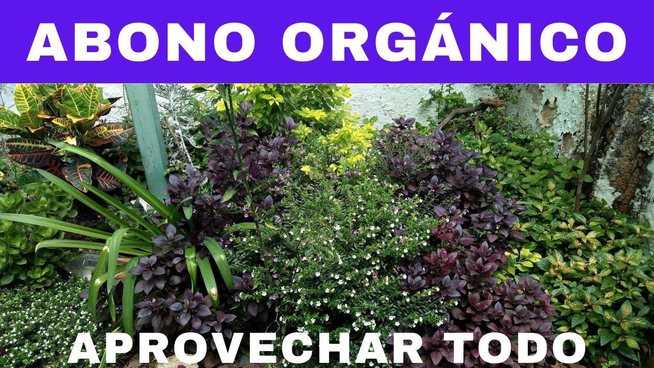 Abono orgánico casero, para que no desperdicies nada en la cocina.- RecetasdeLuzMa