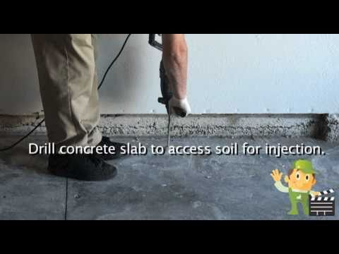 Subterranean Termite Slab Injection And Foaming Youtube