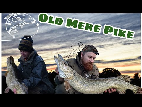 Pike Fishing A Old Mere