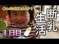 【兎田ぺこら】ぺこらママのエピソードトーク!【ホロライブ】