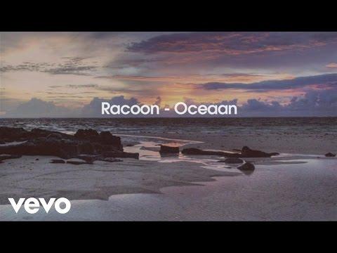 Racoon - Oceaan
