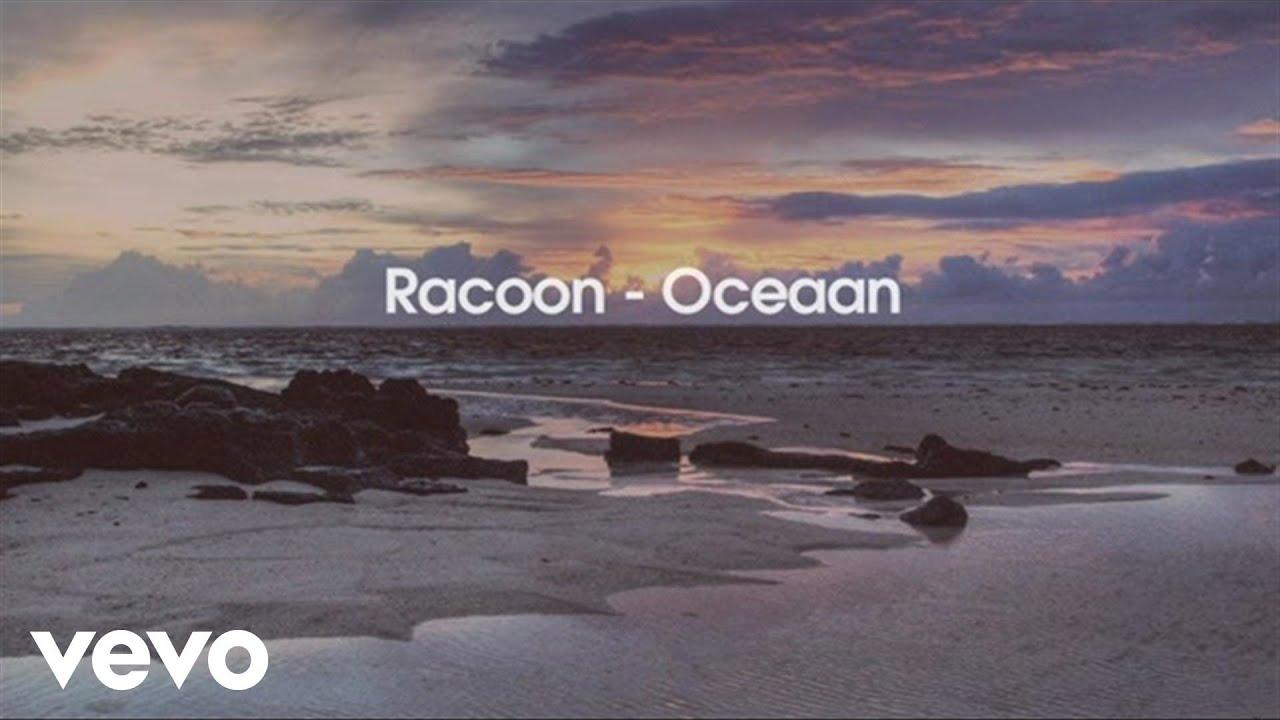 racoon-oceaan-racoonvevo