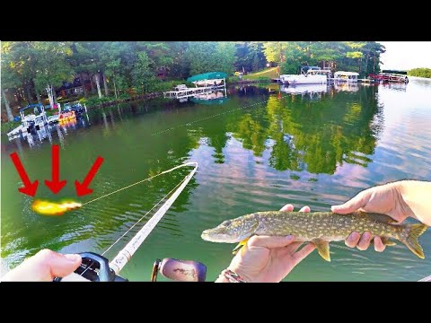 Wisconsin Pike And Bass Fishing | Long Lake