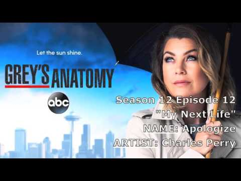 """Grey's Anatomy Soundtrack - """"Apologize"""" by Charles Perry (12x12)"""