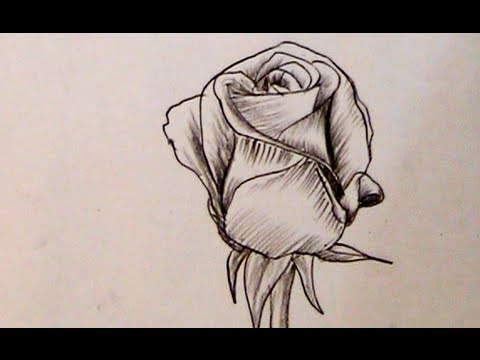 How to draw a beautiful rose with charcoal pencil yzarts yzarts