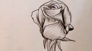 How to Draw a Beautiful Rose with Charcoal Pencil