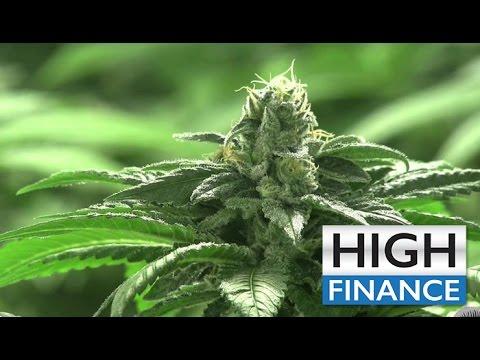 Marijuana News: Terra Tech Opens Another Dispensary - Nectar Holdings Launch 6th Dispensary