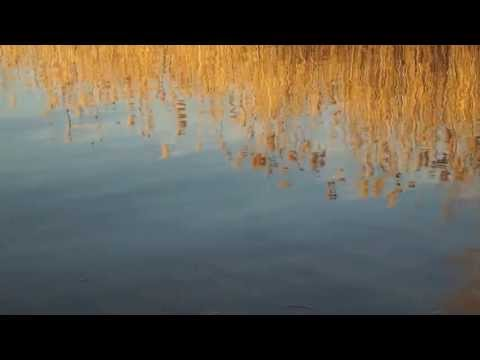 Agan - Dreaming Awake HD