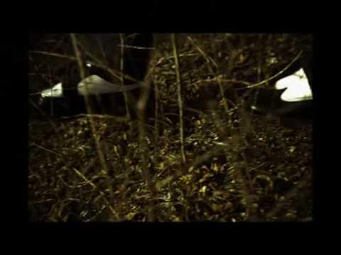 John Frusciante - Dark/Light   with Lyrics
