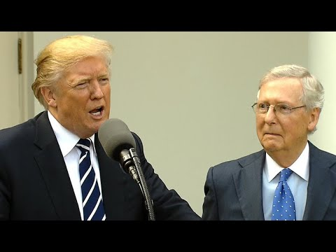 President Trump takes questions with Sen. McConnell