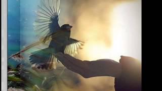 Lynyrd Skynyrd - Life's twisted