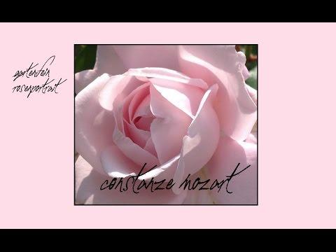 Rose Constanze Mozart | Kordes | gartenfein [HD]