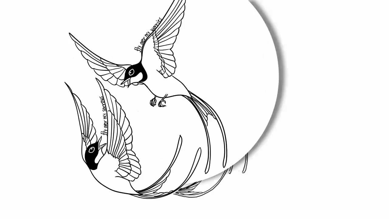 Swallows drawing