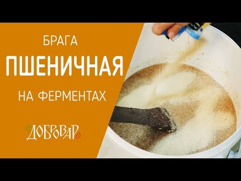 Пшеничная брага на ферментах -  Добровар