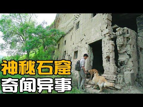 自驾游陕西,主人带着狗闯入神秘石窟,得知真相后赞叹这里太神奇【小白的奇幻旅行】