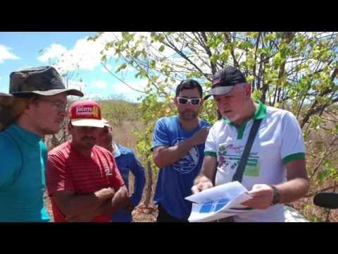 The Brazil Project Foundation