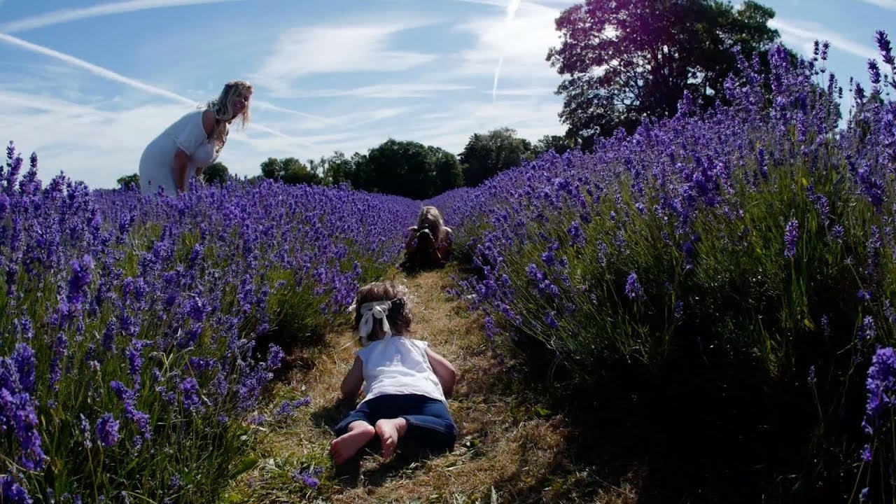 Mindy Coe - Baby Photographer in Surrey (Mayfield Lavender Farm - Purley)