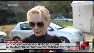 Έλενα Χριστοπούλου: Όλα όσα έγιναν τη μοιραία τη νυχτά