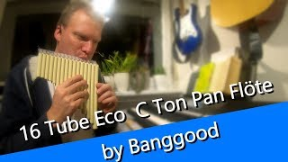 16 Tube Eco Friendly Resin C tone Pan Flute Panflöte Review mit Anblashilfe by Banggood
