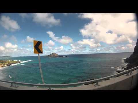 2013 02 12 Hawaii,sea life park